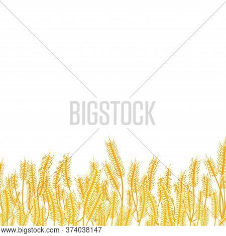 Wheat Ears Golden Border On White Background