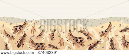 Colorful Locusts Attacking Plants Field Horizontal Background. Swarm Of Insects Threatening Food Sec