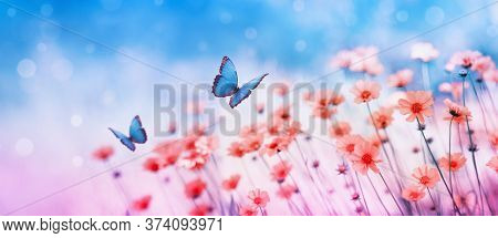 Beautiful Flower Field And Flying Butterflies On Blue Sky Background. Colorful Toning Of Amazing Nat