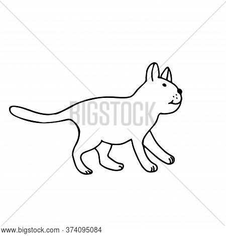 A Cute Cat In Doodle Style. Isolated Outline. Hand Drawn Vector Illustration In Black Ink On White B