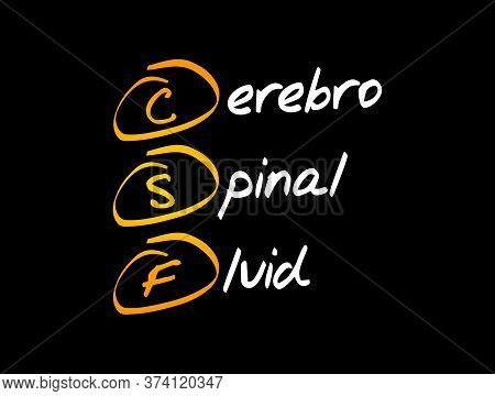 Csf - Cerebrospinal Fluid Acronym, Medical Concept Background