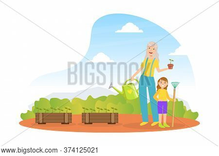 Grandmother And Granddaughter Working In Garden And Watering Seedlings, Grandparent And Grandchild H