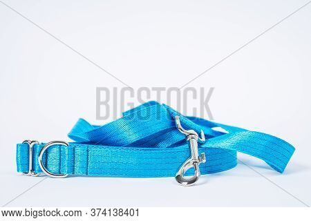 Close Up сolorful Blue Dog Collar And Leash With Silver Metal Fittings From Silky Tape. Pet Supplies