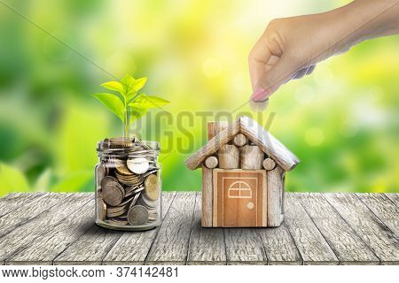 Plant Growing In Savings Coins. House And Coin Placed On The Side. Planning Savings Money Of Coins T