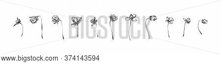 Hand Drawn Anemone Flowers Collection. Outline Floral Ink Painting Set. Black Isolated Sketch Vector