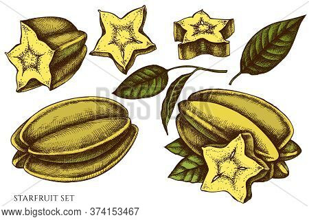 Vector Set Of Hand Drawn Colored Starfruit Stock Illustration