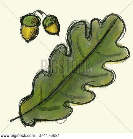Digital Sketch Oak Tree Leaf And Acorn. Black Doodle Outline And Green Colored Foliage, Yellow Acorn