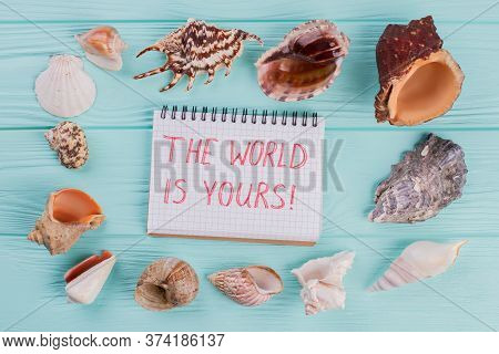 Conch Shells And Notepad On A Light Turquoise Background. Top View Wooden Table.