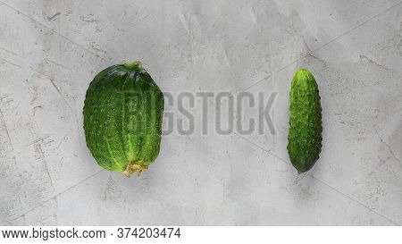 Fresh Ugly Triple Green Organic And Normal Cucumber On Grey Cement Background With Copy Space. Food