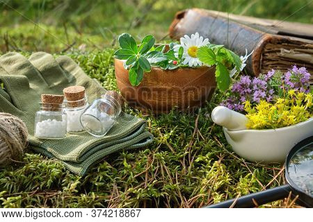 Bottles Of Homeopathic Globules, Mortars Of Medicinal Herbs, Old Book And Magnifying Glass On A Moss