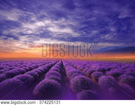 Beautiful Tranquil Nature Background.Amazing Lavender Flowers.Art Design.Creative Photography.Conceptual Photo.Fantasy Floral Art.Artistic Wallpaper.Violet Color.Blooming Lavender Field at Sunset.Blue Sky,Clouds.Orange Color.Unique Summer Landscape.Sun.
