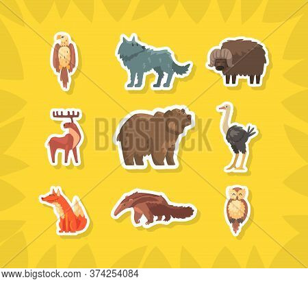Cute Wild Animals Stickers, Eagle, Wolf, Buffalo, Moose, Bear, Ostrich, Fox, Owl, Anteater Vector Il