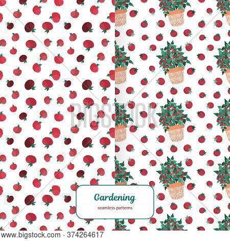 Set Of Two Seamless Patterns With Apples And Tomatoes In Flower Pots. Urban Gardening Bright Vector