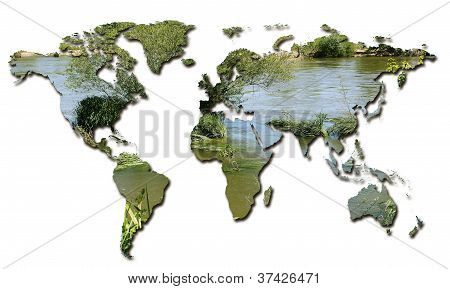 Ecology In The World