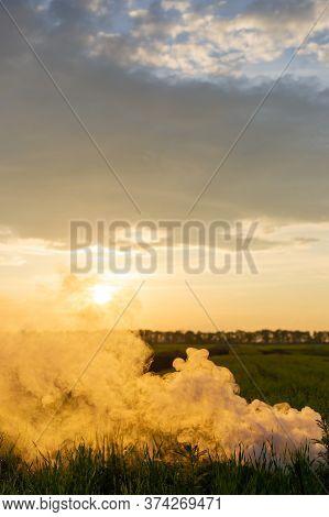 The White Smoke In Grass Against Evening Sun. Sun Near Horizon. Smoke Bomb In Grass.