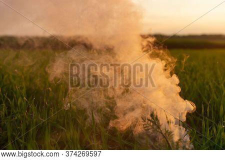 Big Strikeball Smoke Grenade In Young Wheat. The White Smoke In Grass Against Evening Sun. Sun Near