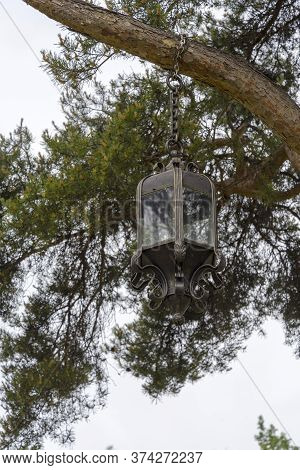 Wrought-iron Lantern Hanging In A Tree On A Summer Day. An Old Lantern On A Tree.