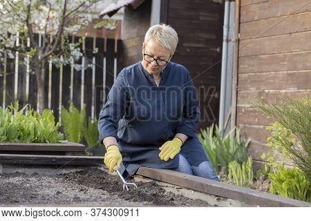 Beautiful Female Gardener Removes Weeds From Garden With Hoe Rake, Cultivating Soil, Loosens Bed Bef