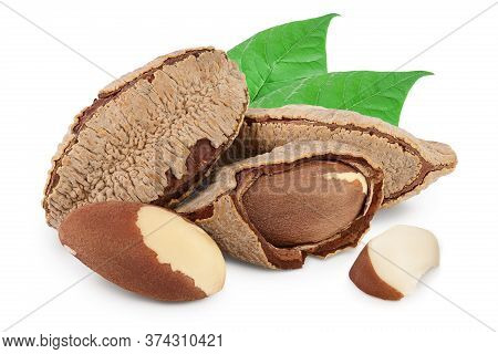 Brasil Nuts In Nutshell Isolated On White Background With Clipping Path And Full Depth Of Field.