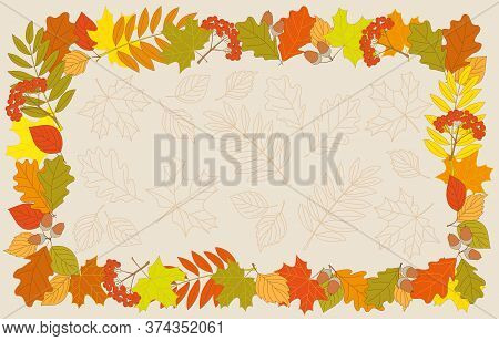 Colorful Frame With Autumn Foliage And Rowanberry Twigs On The Contour Drawing Leaves. Vector Illust