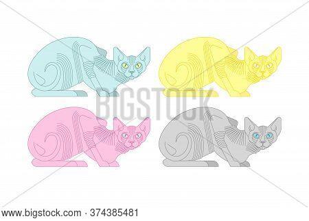Sphynx Cat Set. Hairless Cat Breeds. Pet Vector Illustration