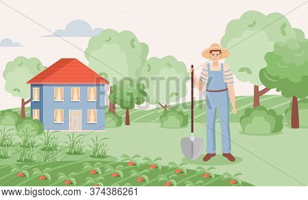 Happy Gardener Growing Carrot In Garden Vector Flat Illustration. Young Man With Shovel Standing On