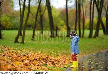 Preschooler Boy Walking In Autumn Park. Outdoor Activities For Children. Stroll During Quarantine.