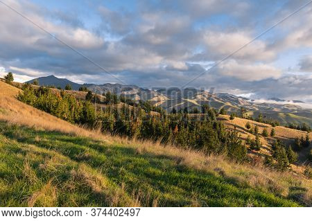Wither Hills In Marlborough Region In New Zealand At Sunset