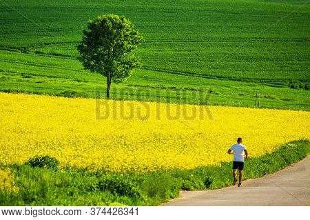 Running Man On The Road In Spring Rural Landscape With Grassy Green Meadows And Rapeseed Fields. Raj