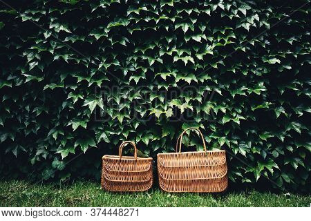 Rattan Eco Baskets For Food Or Lunch In The Garden Among Plants. Eco-friendly Concept Of Consumption