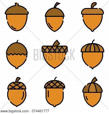 Acorn Icons Set. Outline Set Of Acorn Vector Icons Thin Line Color Flat On White