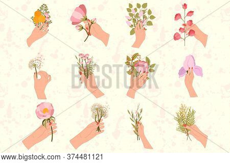 Big Set Of 12 Hands Are Holding Bouquets With Flowers. Lilac, Mimosa, Sakura, Dandelion, Olive Leaf,