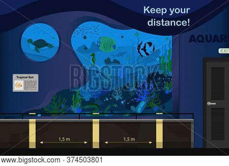 Illustration Of The Aquarium. An Internal Room With Aquariums And Markings For Keeping The Distance