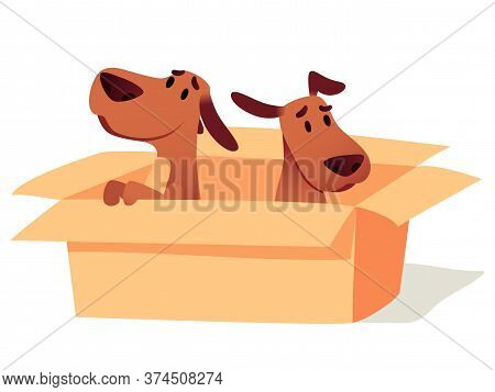 Dogs In Cardboard Box Waiting For Owner, Adoption Concept. Homeless Cute Puppies Searching New Home.