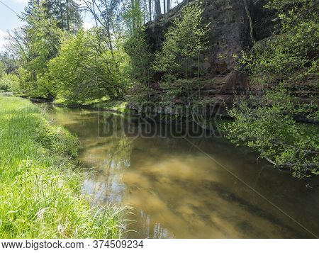 View Over Shallow River Stream With Grassy Shore With Lush Green Trees And Rock In Golden Warm Light