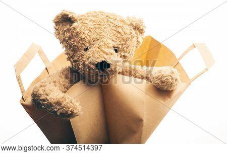 Image Of Toy Bear Bag White Background
