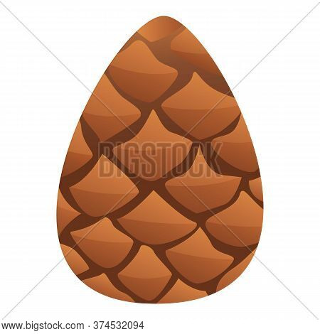 Pine Cone Icon. Cartoon Of Pine Cone Vector Icon For Web Design Isolated On White Background