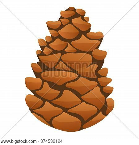 Fir Tree Pine Cone Icon. Cartoon Of Fir Tree Pine Cone Vector Icon For Web Design Isolated On White