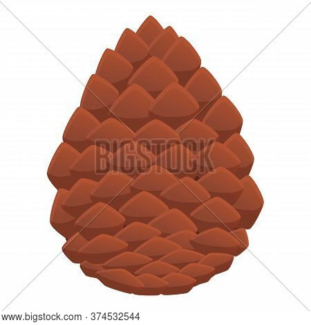 Siberian Pine Cone Icon. Cartoon Of Siberian Pine Cone Vector Icon For Web Design Isolated On White