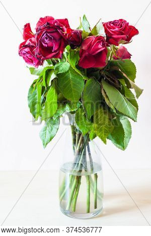 Side View Of Bouquet Of Wilted Red Rose Flowers In Glass Vase On Pale Brown Background
