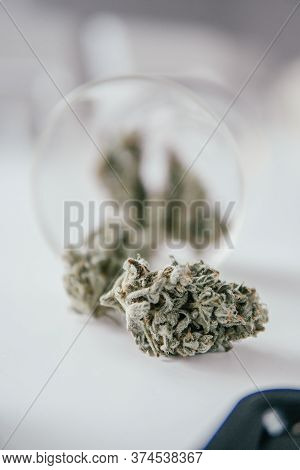 Marijuana Nature Bud. The Sugar Pot Leaves On Buds. White Background. Cannabis Buds In Grinder.