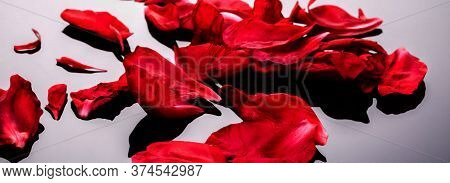 Abstract Valentine Background With Falling Red Peony Petals On Black,