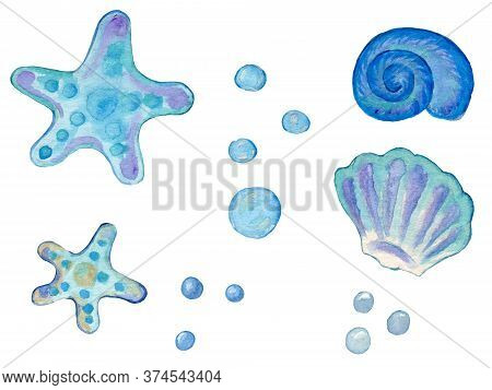 Collection Of Hand Painted Drawn Watercolor Sealife Cliparts