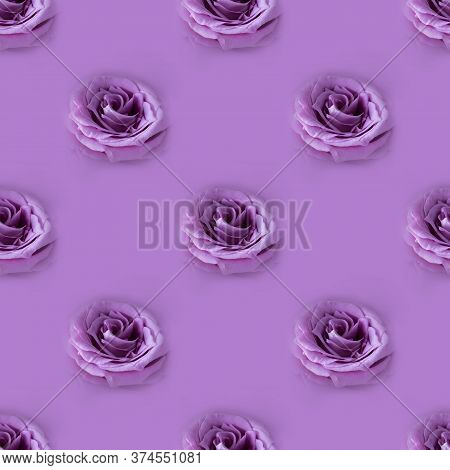 Photographic Collage. Seamless Pattern With Closeup Fresh Violet Rose On Monochrome Background, Macr