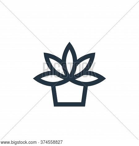 agave icon isolated on white background from vegan collection. agave icon trendy and modern agave sy