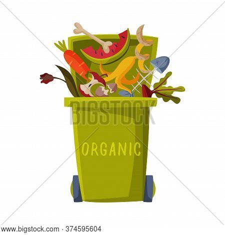 Waste Sorting, Green Trash Can With Sorted Organic Garbage, Segregation And Separation Rubbish Dispo