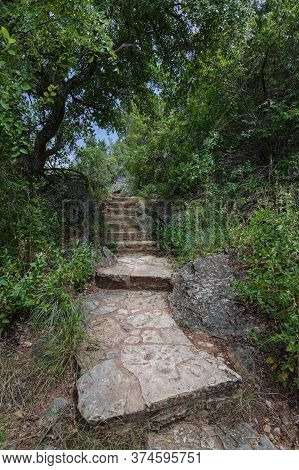 Stairway Of Stone Steps Leading Up A Trail In Thick Lush Green Forest Highlighted By Sunlight With A