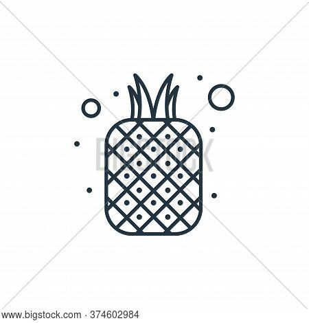 pineapple icon isolated on white background from brazilian carnival collection. pineapple icon trend