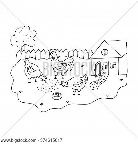 Courtyard In The Village With Walking Hens And A Cock. Doodle Black And White Vector Illustration In