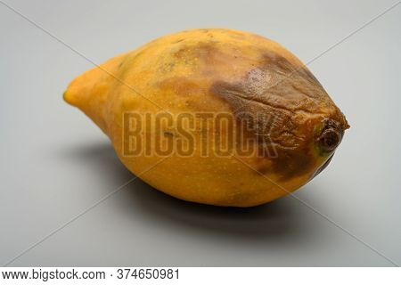Side View Rotten Mango Close Up On A Grey Background